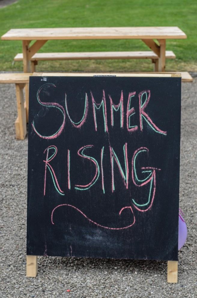 Summer Rising Irish Museum of modern Art Dublin